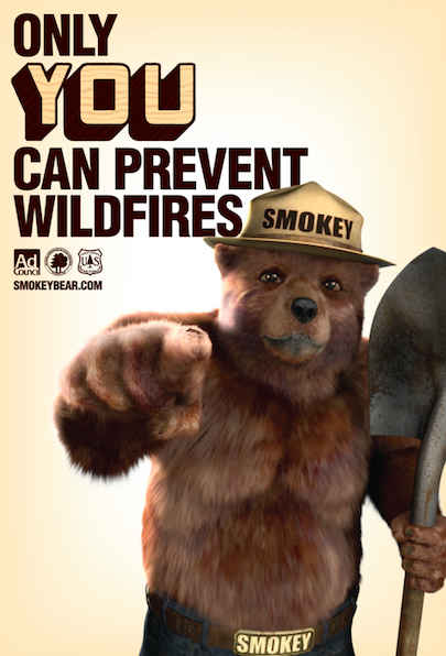 smokey_bear_only_you