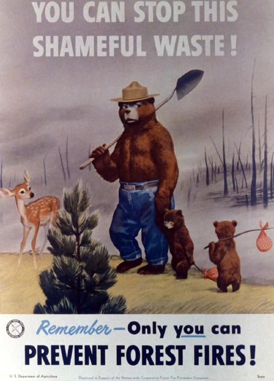 smokey_bear_1951